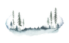 Watercolor Vector Winter Forest Landscape With Fir Trees.