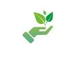 Vektor Hand mit Grüner Blättern isoliert auf weißen Hintergrund