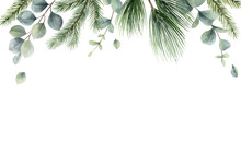 Watercolor Vector Christmas Card With Fir Branches And Eucalyptus Leaves.