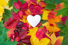 White Heart On Autumn Colorful...