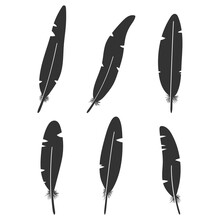 Feathers Black Silhouettes Vector Icons Set Isolated On A White Background.