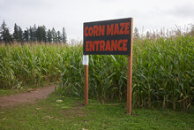 The Entrance To A Corn Maze In...