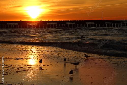 Fototapeta Zachód słońca nad morzem - Sunset obraz