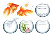 Goldfish And Glass Bowl Set. W...