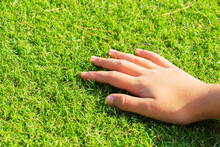 Woman's Hand Touching The Gras...