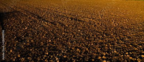 Cuadros en Lienzo plowed field after harvest, ploughed field