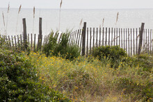 Ocean With Fence And Sea Oats ...