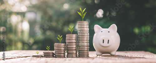 business finance and saving money investment , Money coin stack growing graph with piggy bank saving concept Fototapet