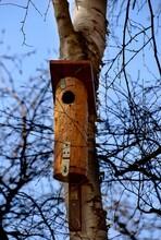 Mała Budka Dla Ptaków Powieszona Na Drzewie