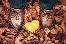 Autumn Boots. Shoes Between Autumn Leaves. Concept Of Autumn Walks And Autumn Mood
