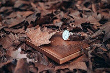 Autumn Time. Clock Lying On A ...