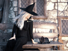 3D Rendering Of Old Witch With Black Cat On A Bench.