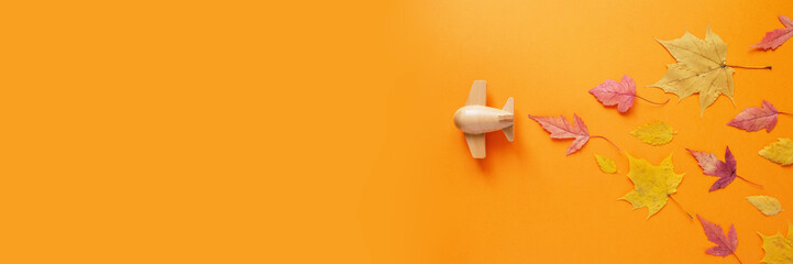 small toy plane with autumn leaf. Autumn concept