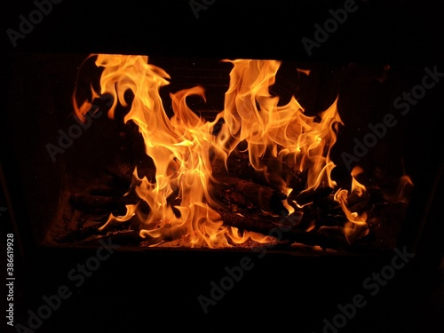 Feu de bois dans une cheminée. Canvas Print