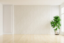 White Plaster Wall Empty Room ...