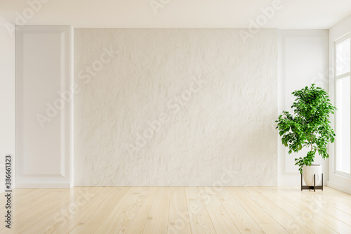 Obraz White plaster wall empty room with plants on a floor. - fototapety do salonu
