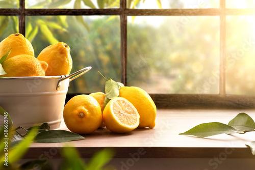 Fototapeta Lemons basket on kitchen with window and orchard outside obraz