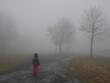 canvas print picture - Kind an nassem Weg mit Baeumen in dickem Nebel