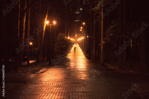 Photo A girl with an umbrella walks along the boulevard in the park at night