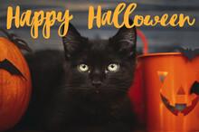 Happy Halloween Text On Black ...