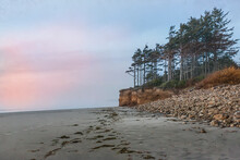 A Distant View Of Wind Swept Trees On The Beach With A Colorful Sunset - Cape Lookout Beach, Oregon