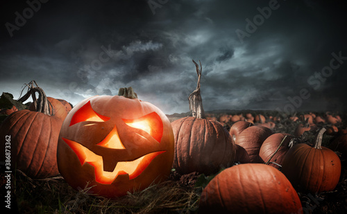 Obraz A carved glowing halloween pumpkin in a field at night. Photo composite. - fototapety do salonu