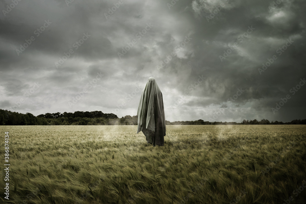 Fototapeta Haunted and bleak landscape with a floating spirit ghost, Disturbing concept.