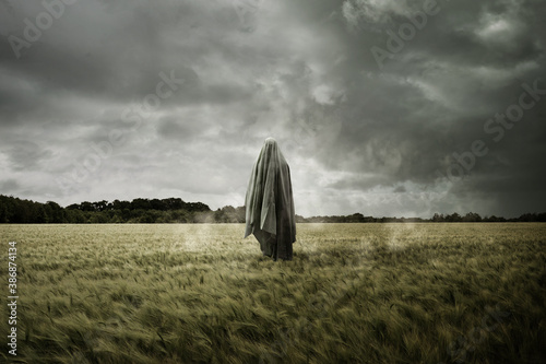Fotografie, Obraz Haunted and bleak landscape with a floating spirit ghost, Disturbing concept