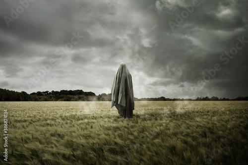 Obraz na plátne Haunted and bleak landscape with a floating spirit ghost, Disturbing concept