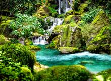 Tropische Gartenlandschaft A23...