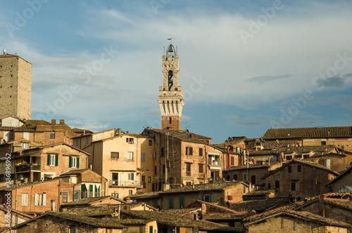 Naklejka premium A view of Siena