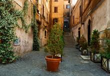 Pretty Little Corner In Rome