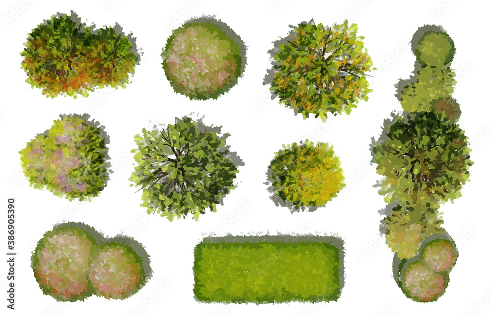Fototapeta Collection of abstract watercolor green tree top view isolated on white background  for landscape plan and architecture layout drawing, elements for environment and garden.