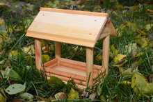 A Close-up On A Wooden Chalet Style Open Sided Wild Bird Platform Feeder On The Green Grass With Yellow Fallen Leaves Around.