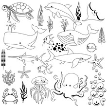 Cute Set Of Marine Fish And Algae Outline Isolated On White Background. Sea Animals In A Flat Style. Cartoon Wildlife For Web Pages. Stock Vector Illustration For Decor And Design, Textiles, Books