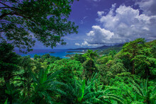 Natural High Angle Panoramic Background With An Atmosphere Surrounded By Mountains And Trees, With A Blurred Wind, Cool
