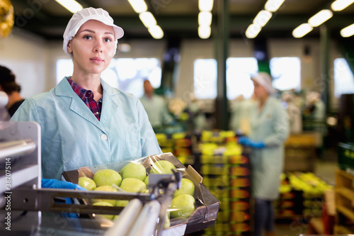 Young diligent positive cheerful glad woman working on sorting line at fruit warehouse, stacking boxes with selected apples