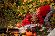 A Woman Lays Out Props For Children's Shooting. A Child Is Sitting In A Red Cap And A Sweater On A Suitcase Against The Background Of Autumn Leaves And Autumn Locations. Autumn Photo Shoot With A Chil