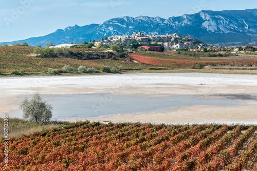 Vineyard and Carralogroño lake in autumn with Laguardia town as background, Rioja Alavesa, Spain