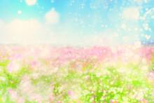 輝きにみちた花畑