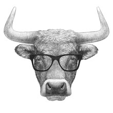 Portrait Of Bull With Glasses. Hand-drawn Illustration.