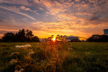 Sunset Over The Field, Landsca...