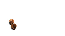 Two Pine Cones On A White Background. The Bumps Are Touching Each Other. Top View With Place For Text.