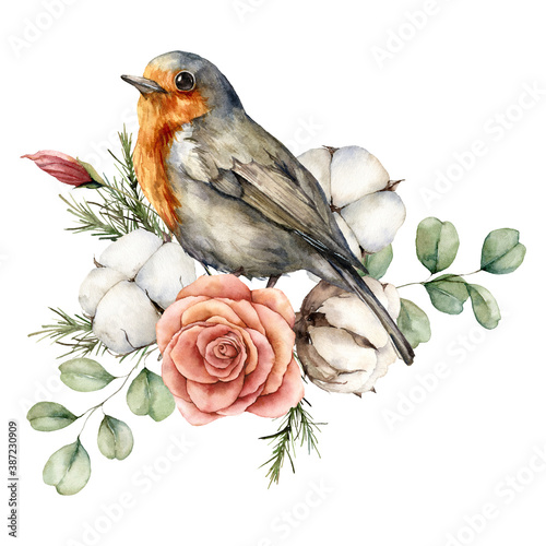 Cuadros en Lienzo Watercolor card with robin redbreast, cotton, rose and eucalyptus leaves