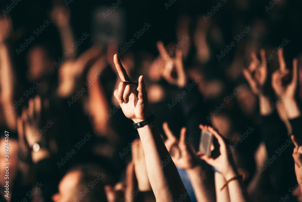 Fototapeta Devil's Horns At A Rock Concert. Heavy metal rock sign.