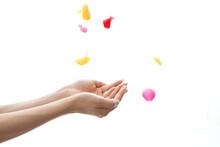 バラの花びらを持つ女性の手