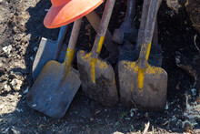 Background With Shovels And Tree Stump. Manual Uprooting Of Tree.
