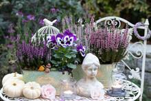 Florales Herbst-Arrangement Mi...