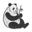 Panda bear sketch engraving vector illustration. T-shirt apparel print design. Scratch board imitation. Black and white hand drawn image.