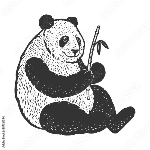 Obraz Panda bear sketch engraving vector illustration. T-shirt apparel print design. Scratch board imitation. Black and white hand drawn image. - fototapety do salonu